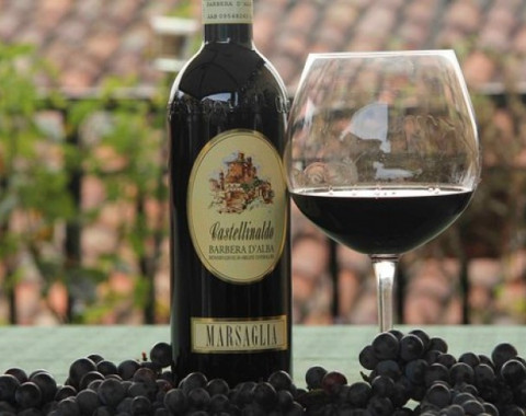 Barolo and Bicycle Tours in Piedmont